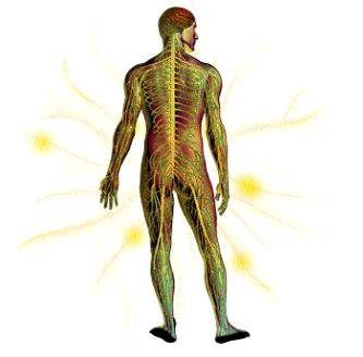Webcast Léčba neuropatické bolesti